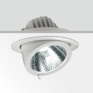 40w Cob Led Trunk Down Light Indoor Lighting Fixtures E