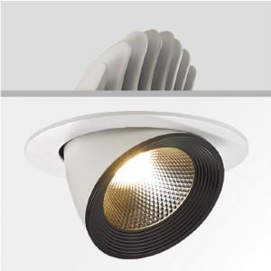 25W COB LED Trunk Down Light/LED Building Lighting Fixtures -F